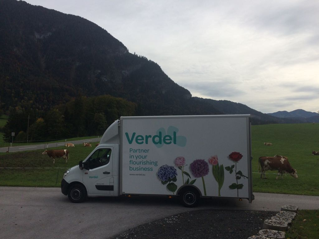 Verdel car fleet corporate design