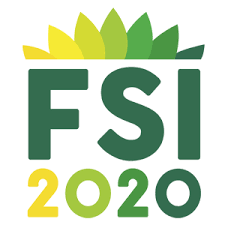 FSI2020 Logo