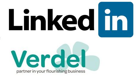 Verdel LinkedIn page